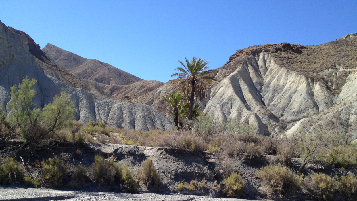 NATURAL PLACE DESERT OF TABERNAS